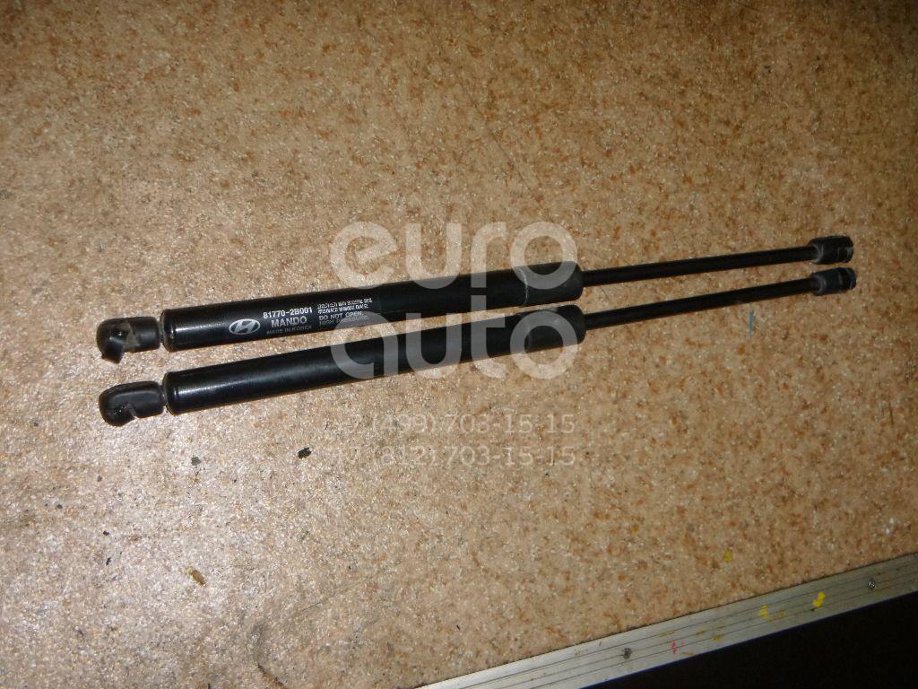 Амортизатор двери багажника для Hyundai Santa Fe (CM) 2005-2012 - Фото №1