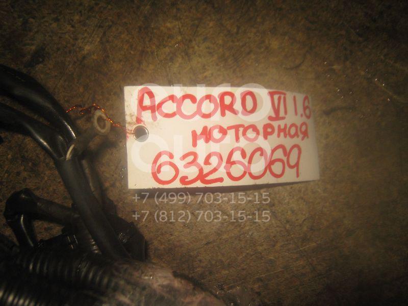 Проводка (коса) для Honda Accord VI 1998-2002 - Фото №1