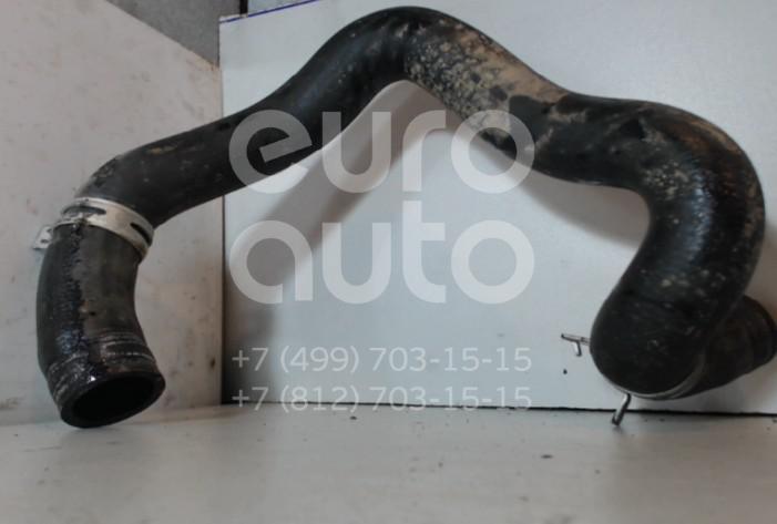 Купить Патрубок радиатора Citroen Xsara Picasso 1999-2010; (1343AY)