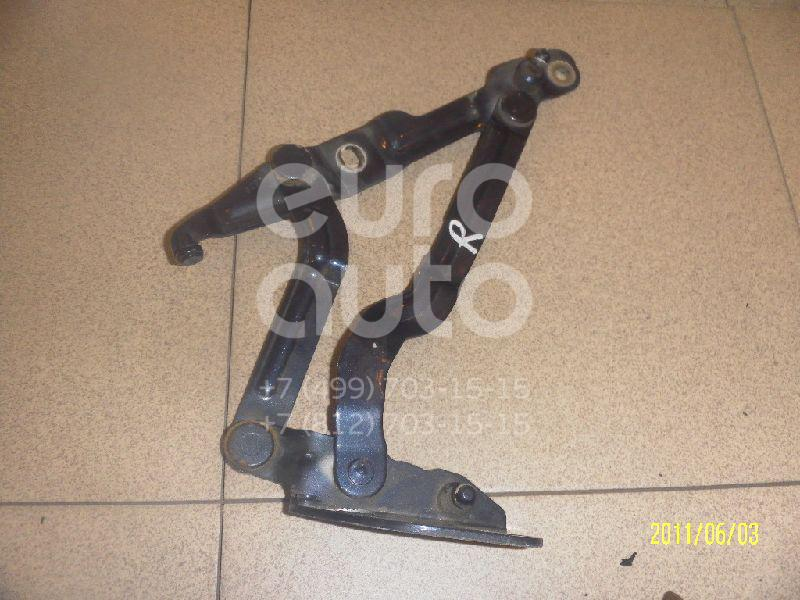 Купить Петля крышки багажника VW Passat [B5] 1996-2000; (3B5827302B)