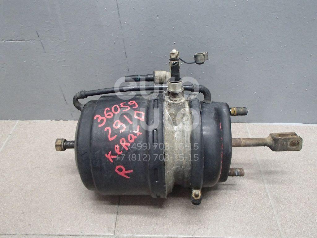 Купить Энергоаккумулятор Renault TRUCK Kerax 1997-; (9254315510)