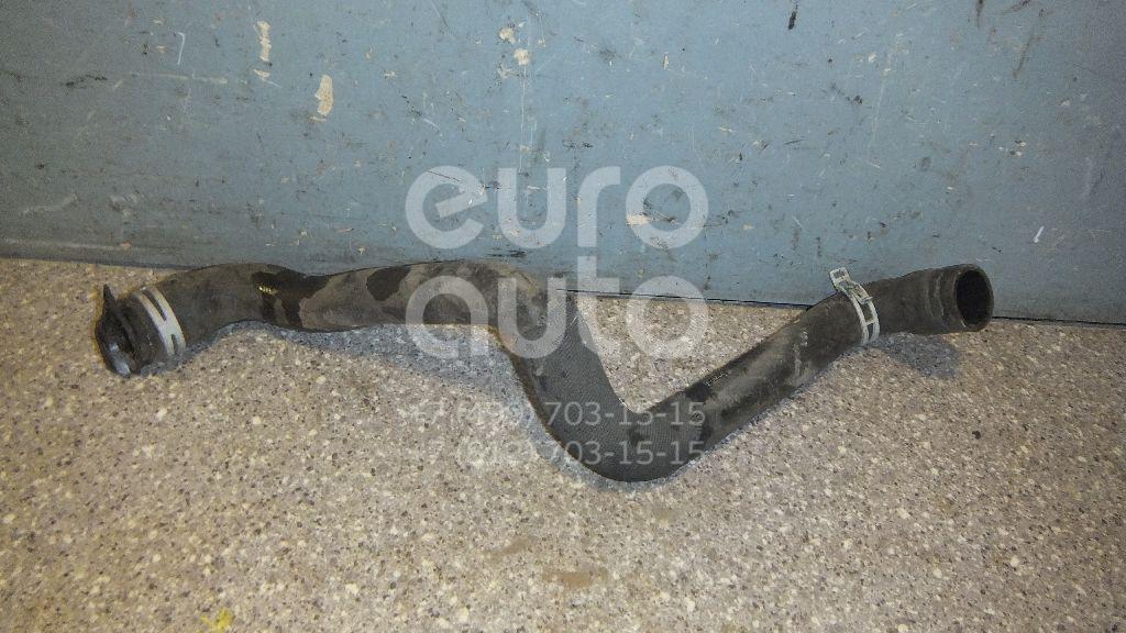 Купить Патрубок радиатора Ford Focus III 2011-; (8V618260BC)