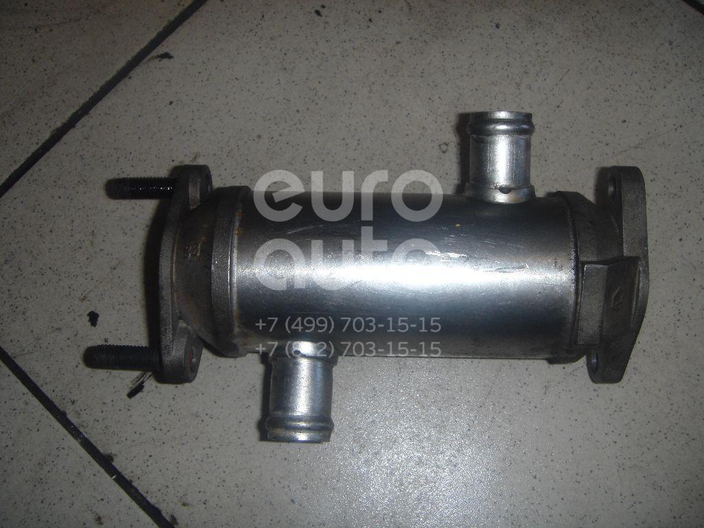 Радиатор системы EGR для Hyundai,Kia Terracan 2001-2007;Carnival 1999-2005 - Фото №1