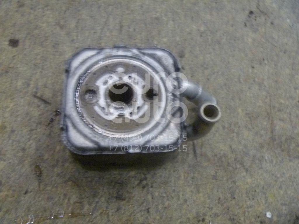Радиатор масляный для VW,Audi Passat [B5] 2000-2005;A6 [C5] 1997-2004 - Фото №1