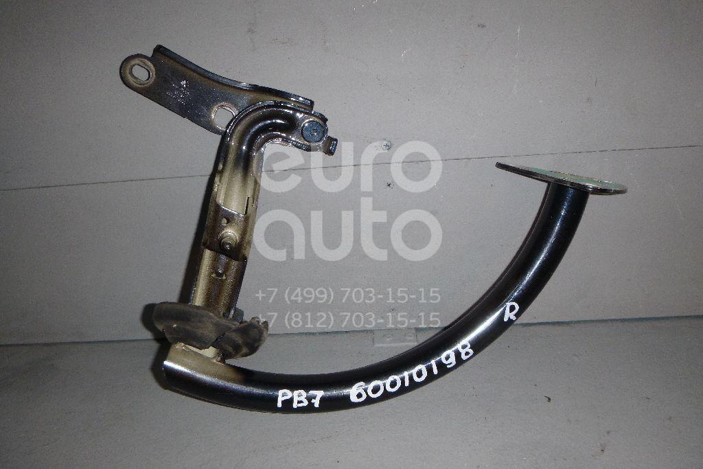Петля крышки багажника для VW Passat [B7] 2011>;Passat [B6] 2005-2010 - Фото №1