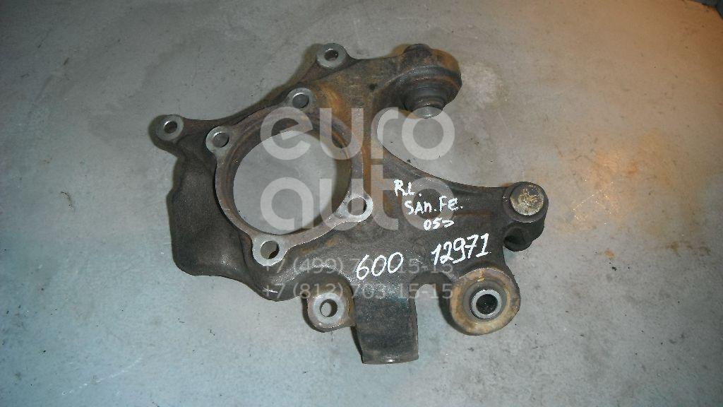 Кулак поворотный задний левый для Hyundai Santa Fe (CM) 2005-2012 - Фото №1