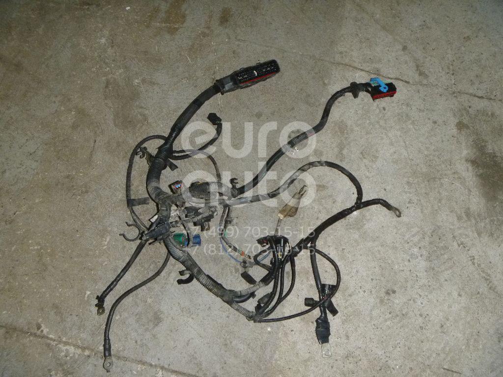 Купить Проводка (коса) Ford Focus II 2005-2008; (3M5T14A280SG)
