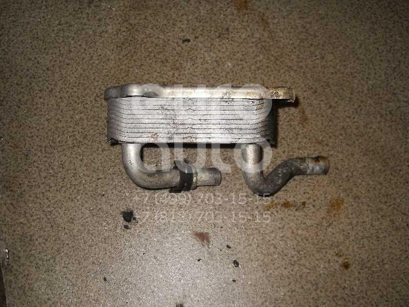 Радиатор масляный для Mercedes Benz W210 E-Klasse 1995-2000;W163 M-Klasse (ML) 1998-2004;W202 1993-2000;W220 1998-2005;C208 CLK coupe 1997-2002;G-Class W463 1989>;W215 coupe 1999-2006;R230 SL 2001-2012;W219 CLS 2004-2010 - Фото №1