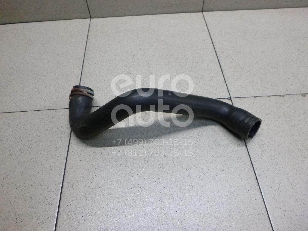 Купить Патрубок радиатора Ford Focus III 2011-; (8V618286BA)